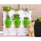 Minigarden giardino verticale + erbagatta in omaggio (bianco)